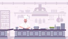 Ejemplo interior del vector de la cocina del restaurante ilustración del vector