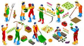 Ejemplo isométrico del vector de la colección del icono de People 3D del granjero libre illustration