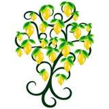 Ejemplo jugoso del vector de la fruta del verano del árbol de limón stock de ilustración