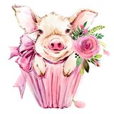 Ejemplo lindo de la acuarela del cerdo libre illustration
