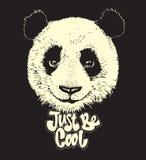 Ejemplo lindo de la panda, oso dibujado mano Fotos de archivo libres de regalías