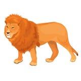 Ejemplo Lion Walking del vector Fotografía de archivo libre de regalías