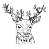 ejemplo a mano del vector Ciervos del inconformista con el arco rojo Foto de archivo libre de regalías
