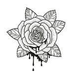 Ejemplo monocromático del vector de la flor de Rose Rosa hermosa aislada en el fondo blanco Elemento para el diseño de tatuaje Imagenes de archivo