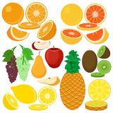 Ejemplo plano de los iconos del vector de las frutas Fotografía de archivo