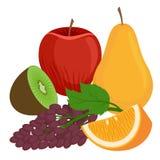 Ejemplo plano de los iconos del vector de las frutas Foto de archivo