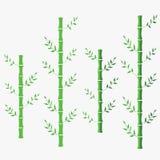 Ejemplo plano del vector de bambú bambú chino oriental verde Bambú en fondo aislado blanco ilustración del vector
