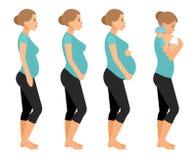 Ejemplo plano del vector de la mujer embarazada y del bebé recién nacido Cuerpo hermoso del embarazo aislado en el fondo blanco
