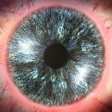 Ejemplo rojo del globo del ojo 3D Imagen de archivo
