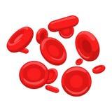 Ejemplo rojo del vector del eritrocito del glóbulo Fotografía de archivo