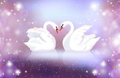 Ejemplo romántico de un par de cisnes blancos en un fondo borroso con las chispas ilustración del vector