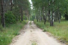 Ejemplo rural del paisaje del verano del camino forestal del campo Foto de archivo libre de regalías