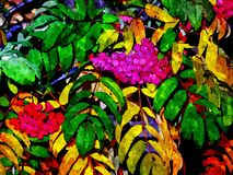 Ejemplo vivo con las bayas y las hojas de la ceniza stock de ilustración