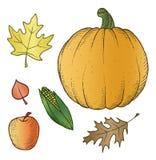 Ejemplos de la cosecha ilustración del vector