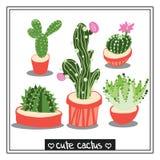 Ejemplos del cactus ilustración del vector