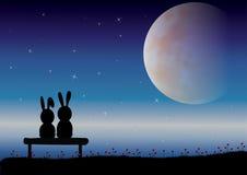 Ejemplos del vector, pares románticos del conejo Fotografía de archivo