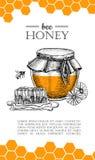 Ejemplos dibujados mano de la abeja de la miel del vector Bandera de la miel, cartel ilustración del vector