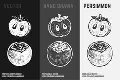 Ejemplos exhaustos del vector del caqui o del caqui de la mano stock de ilustración
