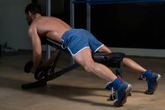 Ejercicio de Doing Heavy Weight del atleta de la aptitud para la parte posterior Imagen de archivo libre de regalías