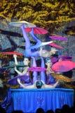 Ejercicio de equilibrio Foto de archivo