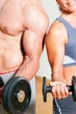 Ejercicio de la pesa de gimnasia en gimnasia Imagen de archivo libre de regalías