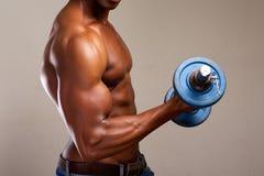 Ejercicio del bíceps Imagenes de archivo