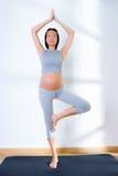 Ejercicio hermoso de la aptitud de la gimnasia de mujer embarazada Imagen de archivo libre de regalías