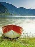 Eka på kusten av sjön Idro i nordliga Italien Arkivbild