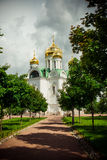 Ekaterina`s cathedral with Golden domes. Pushkin. Russia Stock Photos