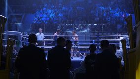Ekaterinburg Ryssland - April 16, 2017: Boxas kamp på lättvikts- för titeln Sikten från under ställningarna Royaltyfria Foton