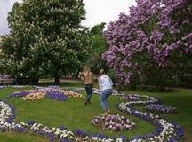 Ekaterininsky trädgård i St Petersburg Fotografering för Bildbyråer