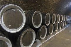 Eken barrels med vin i vinodlingsellarsna crimea fotografering för bildbyråer