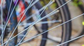 Eker ett slut för cykelhjul upp arkivbilder