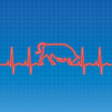 EKG Bull. Vector illustration of an EKG heartbeat bull pattern Stock Image