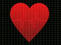 EKG or heart monitor Royalty Free Stock Images