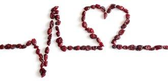 Ekg secco dei mirtilli rossi Cuore, amore Isolato immagini stock libere da diritti