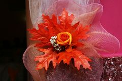 Ekibany de fleur orange Images libres de droits