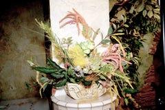 Ekibany de plantas secadas Foto de Stock
