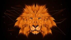 EKO LION Stockbild