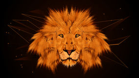 Brown Lion. Lion Abstract Digital Brown Background Stock Image