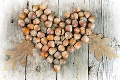 Ekollonar som bildar en hjärta på en träbakgrund Royaltyfri Bild