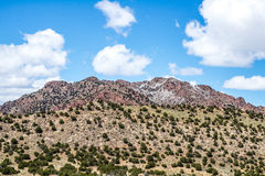 Ekologi parkerar den tempelkanjonCanon staden Colorado Arkivfoton