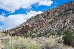 Ekologi parkerar den tempelkanjonCanon staden Colorado royaltyfri bild