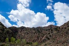 Ekologi parkerar den tempelkanjonCanon staden Colorado Arkivfoto