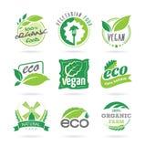 Ekologi & strikt vegetarian, vegetarisk symbolsuppsättning stock illustrationer