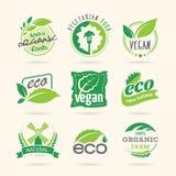 Ekologi & strikt vegetarian, vegetarisk symbolsuppsättning royaltyfri illustrationer