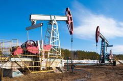 Ekologia, bionomics dzień Czerwiec Kazakhstan miesiąc olej pompuje western Przemysł paliwowy equipment Belkowata pompa zdjęcia royalty free