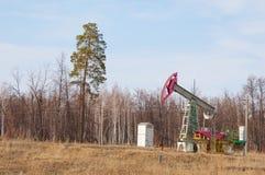 Ekologia, bionomics dzień Czerwiec Kazakhstan miesiąc olej pompuje western Przemysł paliwowy equipment Belkowata pompa zdjęcia stock