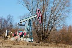 Ekologia, bionomics dzień Czerwiec Kazakhstan miesiąc olej pompuje western Przemysł paliwowy equipment Belkowata pompa obrazy stock