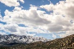 Ekologia jaru Canon Parkowy Świątynny miasto Kolorado zdjęcie stock